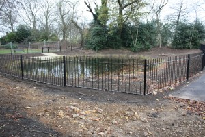The Lilly Pond, Eaglesfield Park December 2011