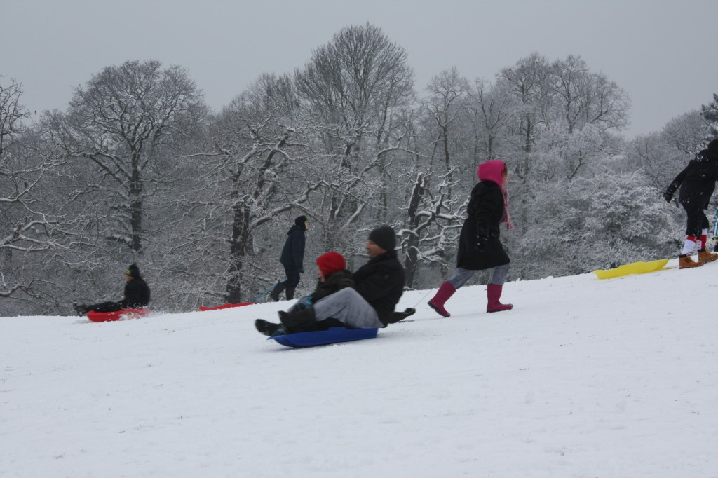 Sledging down Oxleas Meadows