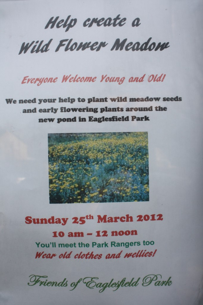Friends of Eaglesfield Park Poster