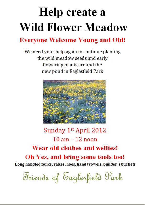 Friends of Eaglesfield Park Wild Flower Garden Poster