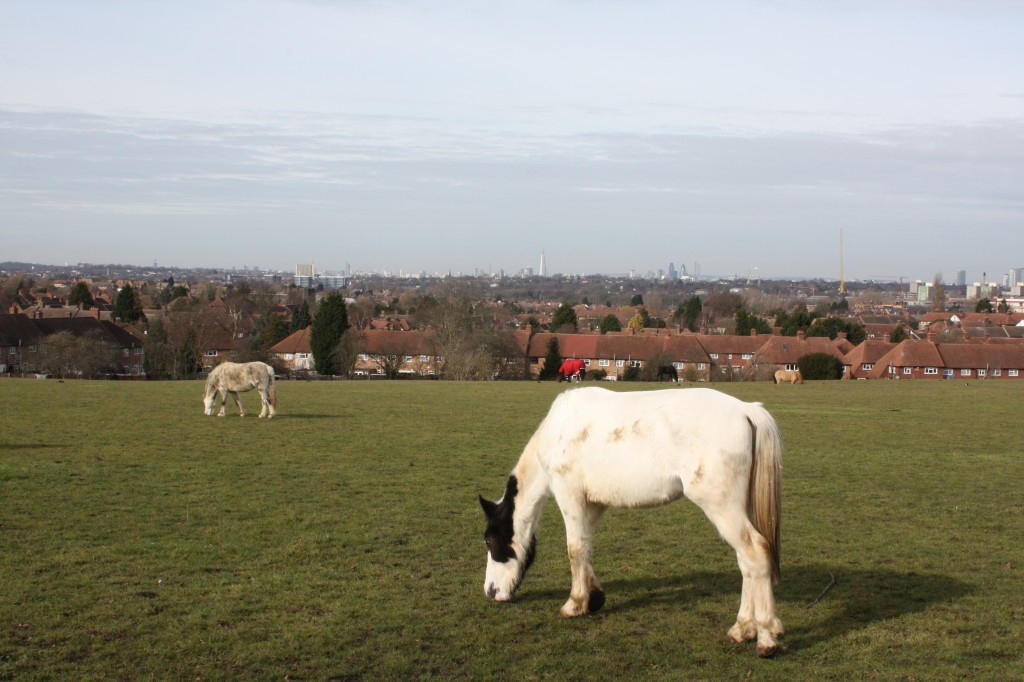 View towards Central London from Green Chain Walk in Eltham