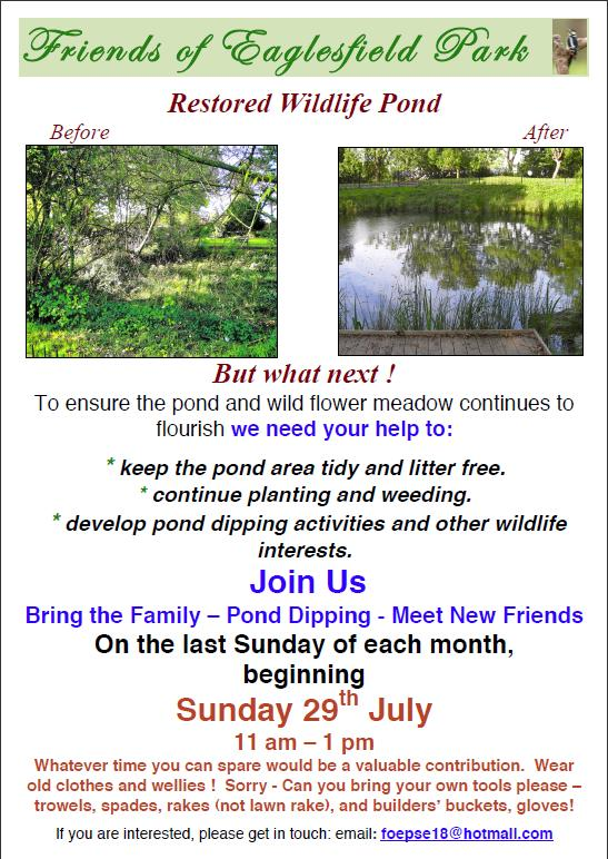 Eaglesfield Pond tidy up and pond dipping poster