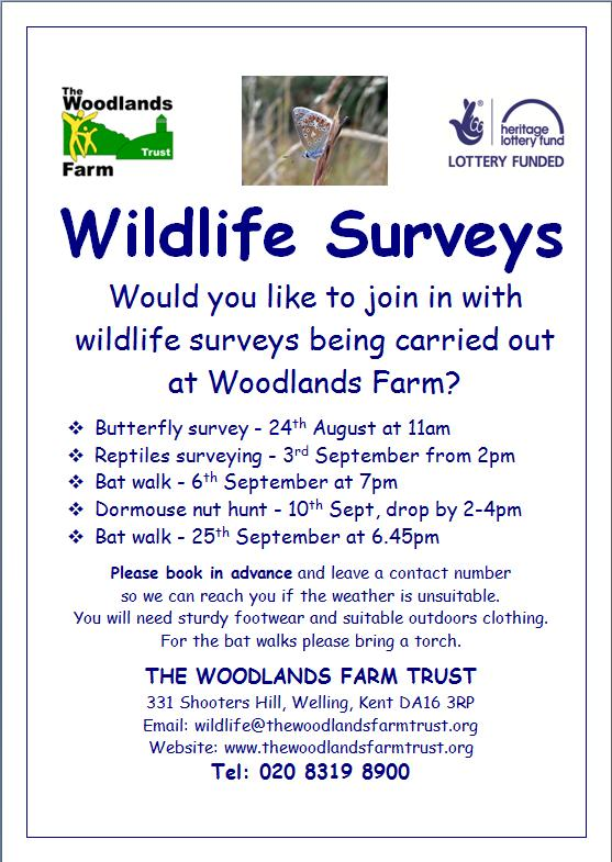Woodlands Farm Wildlife Surveys Poster