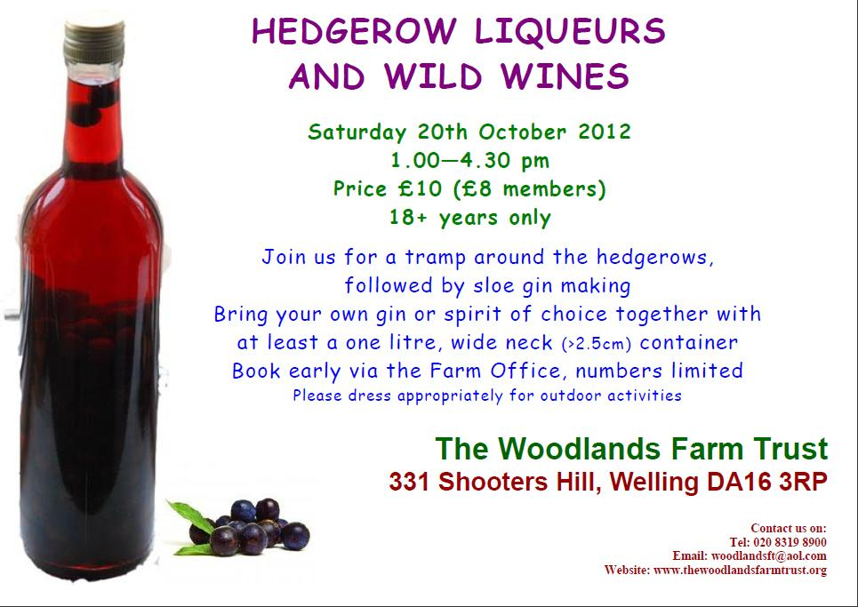 Hedgerow Liqueurs and Wild Wines leaflet