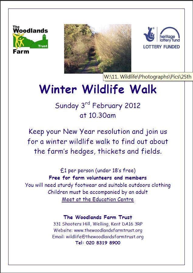 Woodlands Winter Wildlife Walk