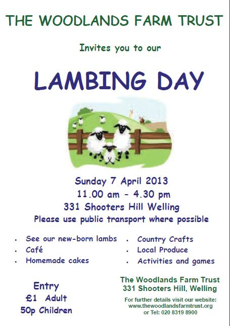 Lambing Day Poster