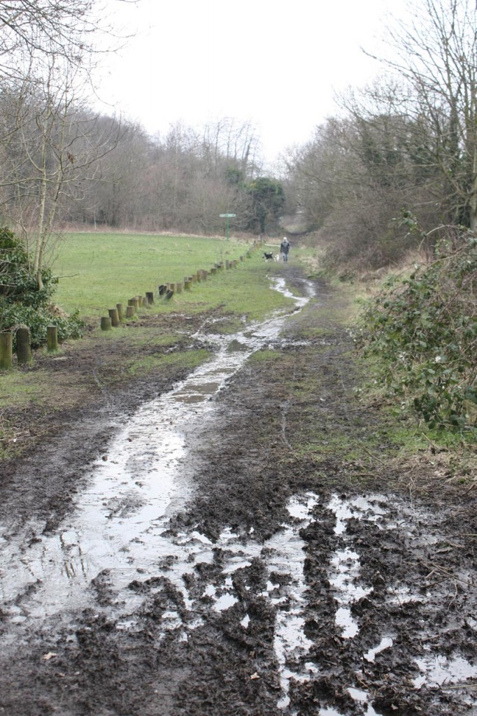 Dothill - to be resurfaced and have a new drainage system