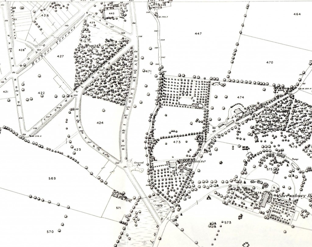 Snippet from 1866  OS Map