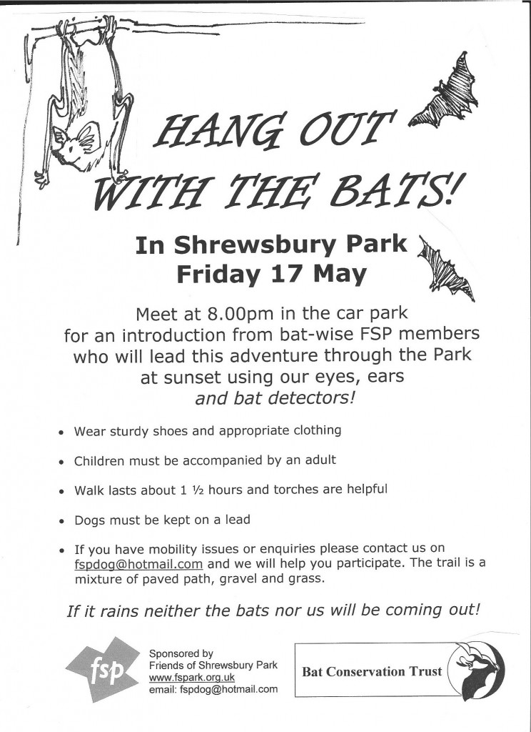 Shrewsbury Park Bat walk poster 2013