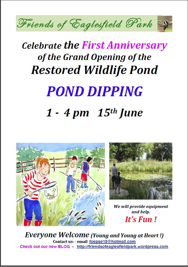 Pond Dipping Poster