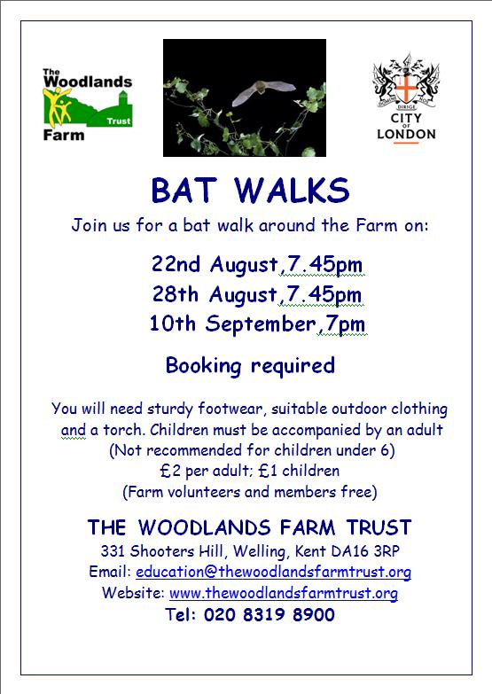 Woodlands Farm Bat Walks 2013 Poster
