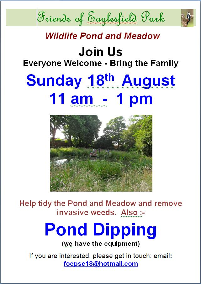 Pond Tidy Poster