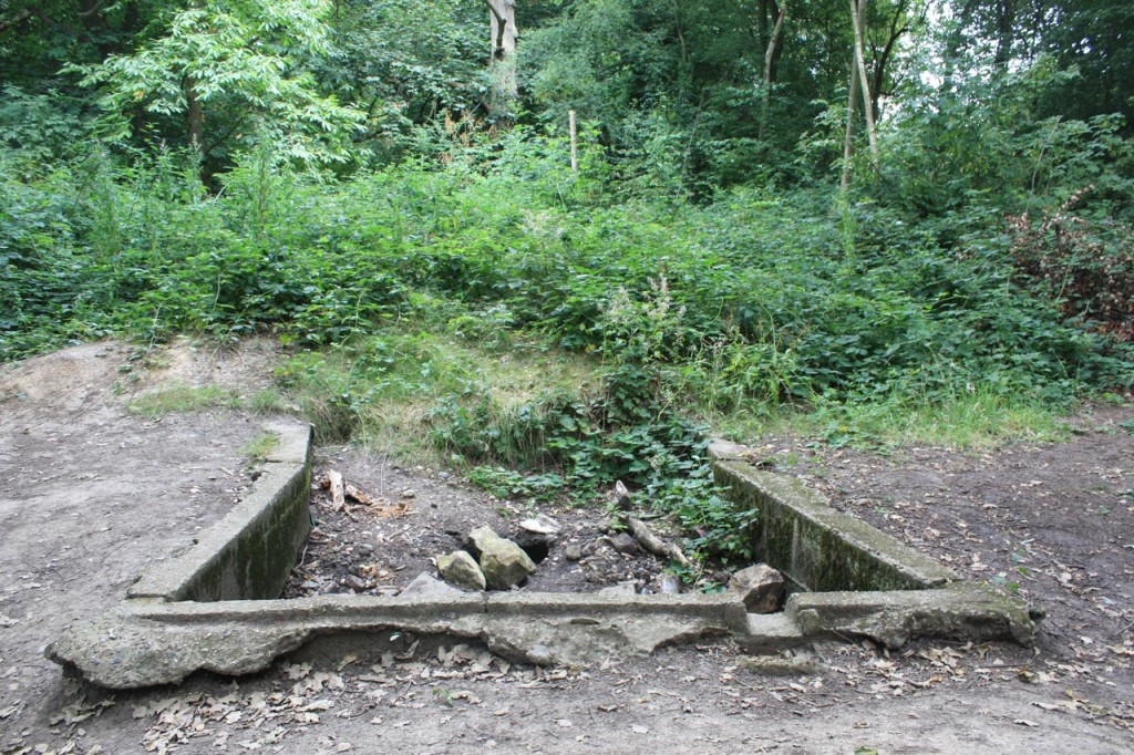 Concrete tank in Oxleas Wood