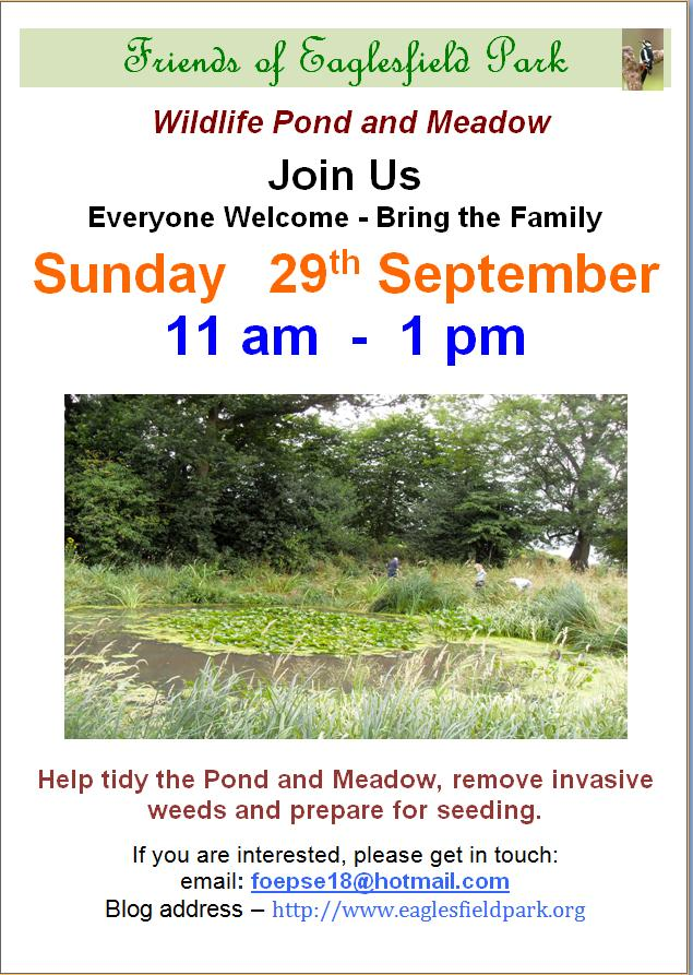Eaglesfield Pond Tidy Poster