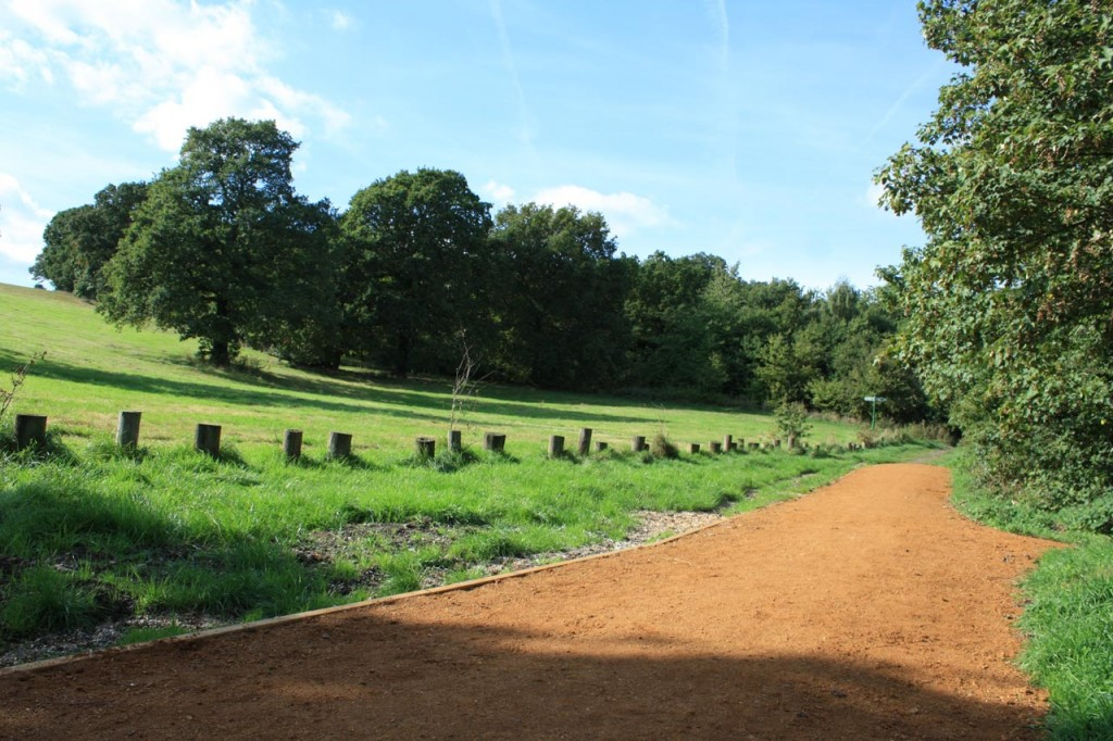 New path on Dot Hill, Shrewsbury Park