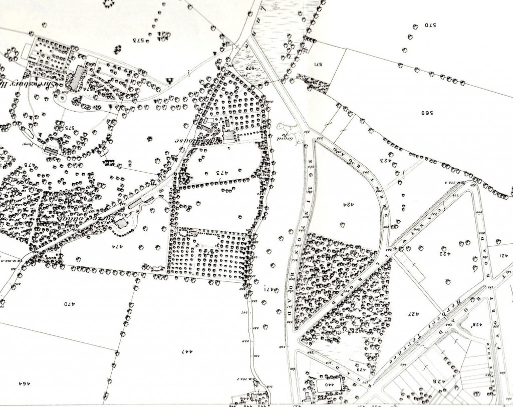 Snippet from 1866 OS Map rotated so South is at the top