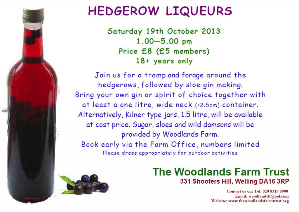 Hedgerow Liqueurs flyer