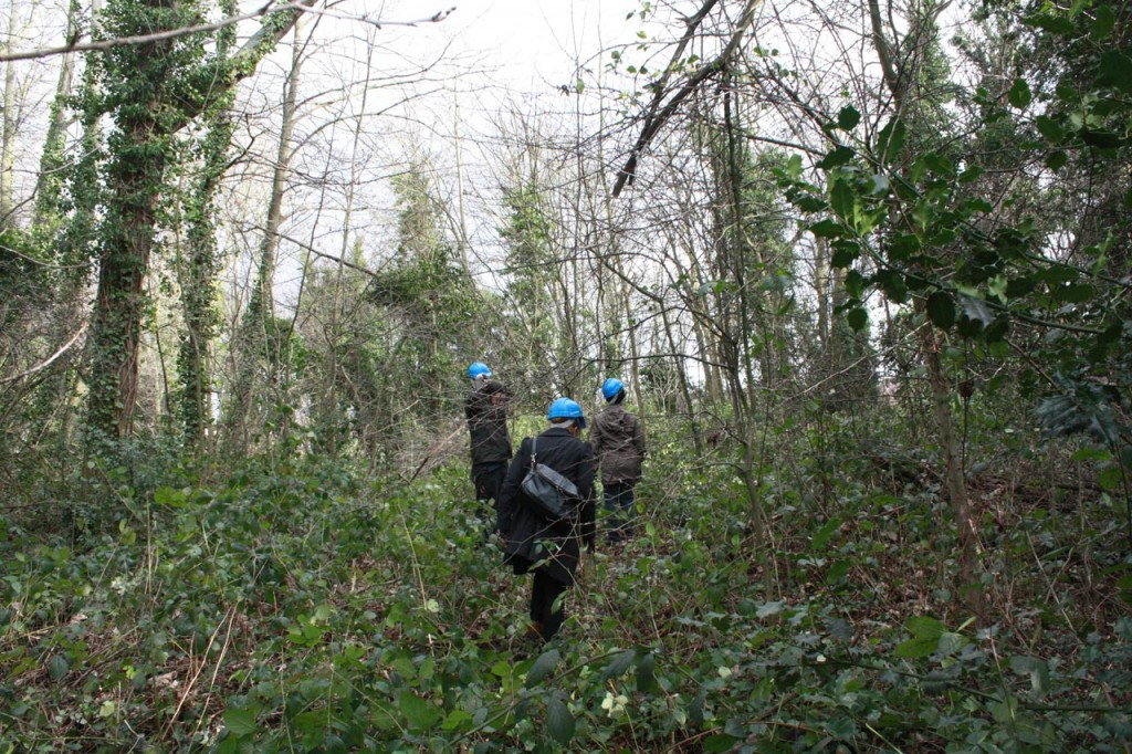 Guided tour of the woodland site in February