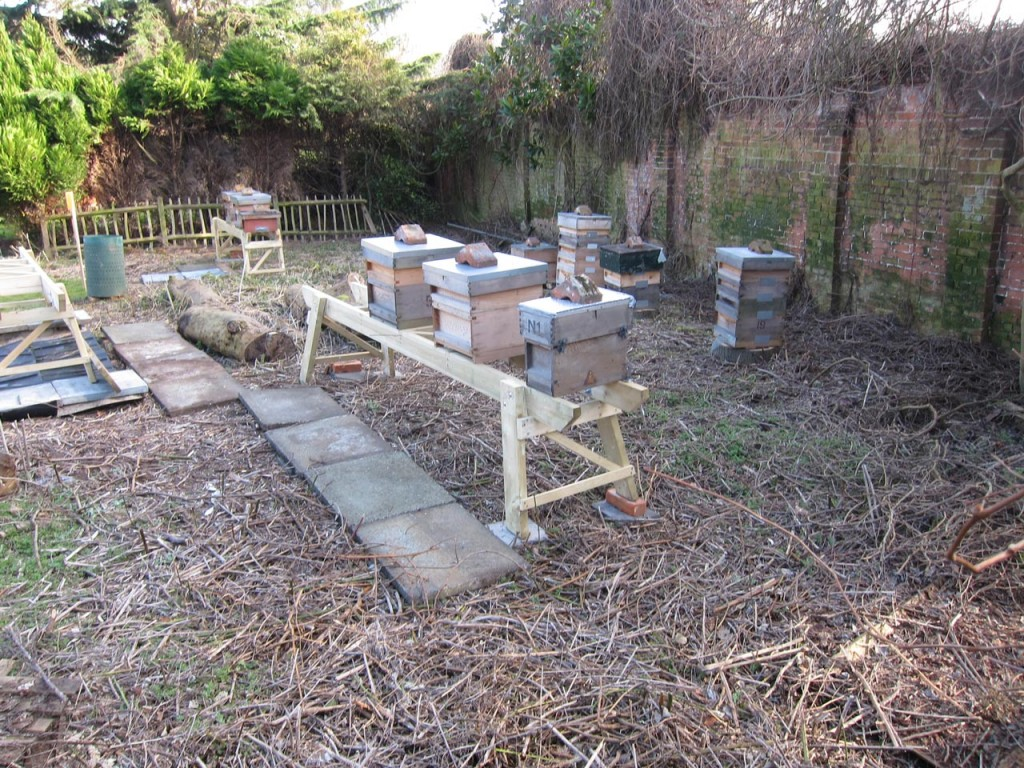 The hives of Oxleas Apiary