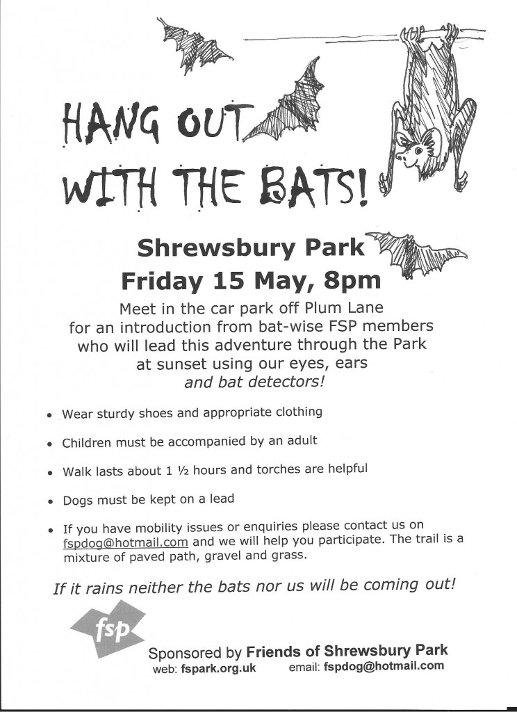 May 15 bat walk poster