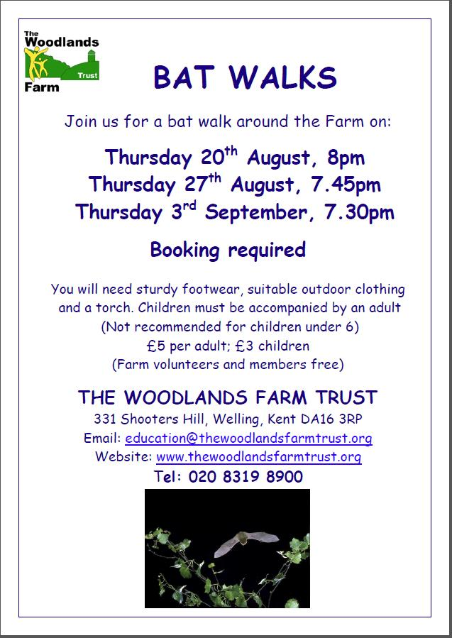 Bat Walks at Woodlands Farm 2015