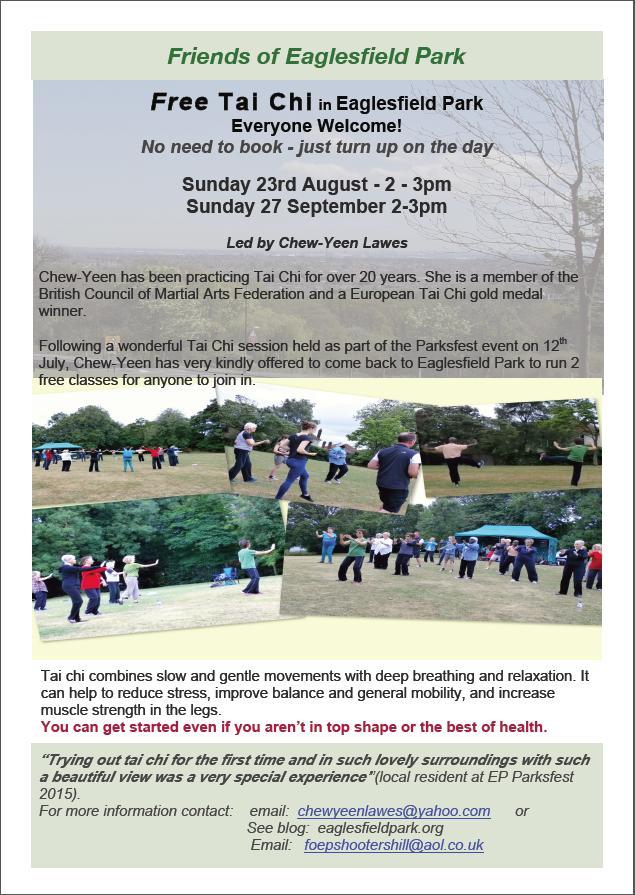 Eaglesfield Park Tai Chi Poster