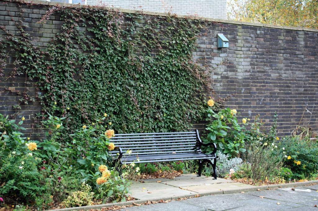New bench in the Pet Cemetery garden