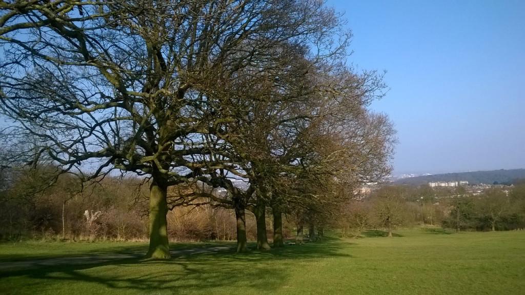 A Spring day in Shrewsbury Park