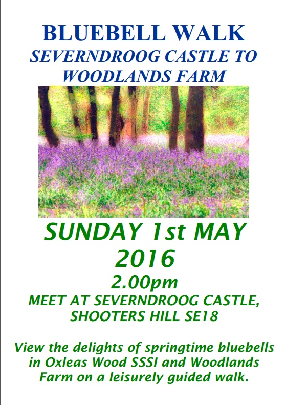 Bluebell Walk Poster 2016