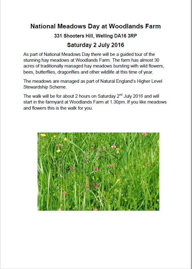 National Meadows Day at Woodlands Farm