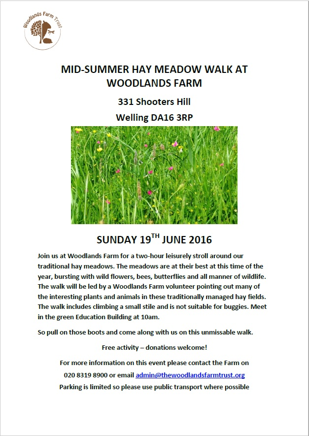 Midsummer hay meadow walk poster