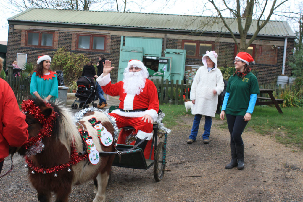 Father Christmas arriving at Woodlands Farm drawn by Bob the pony