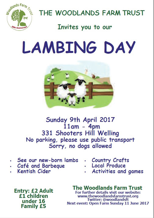 Woodlands Farm Lambing Day 2017