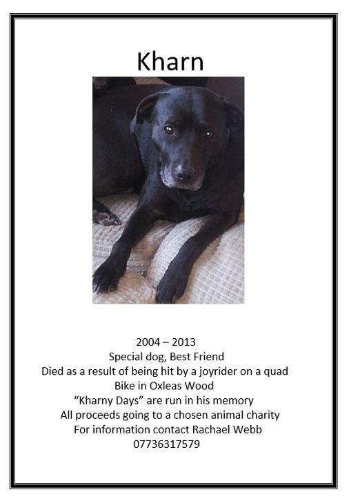 Oxleas Wood Dog Show