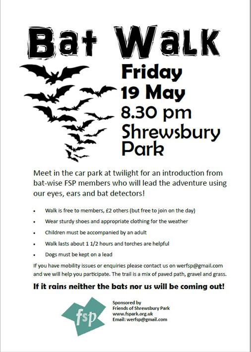 Bat Walk Poster 2017