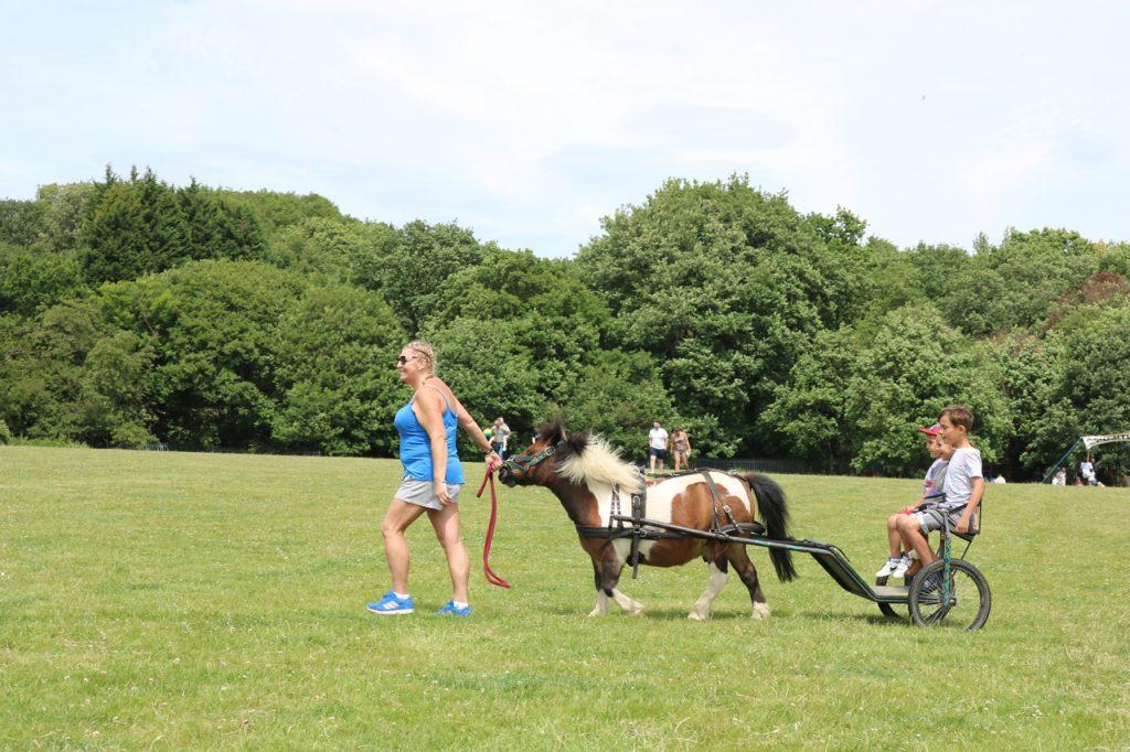 Bob the pony cart rides at Woodlands Farm Summer Show
