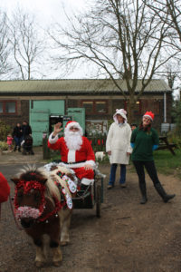 Father Christmas arrives at Woodlands Farm