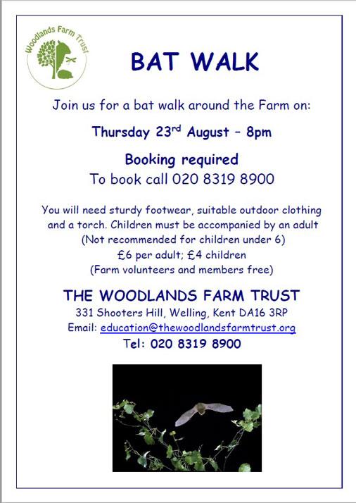 Woodlands Farm Bat Walk poster