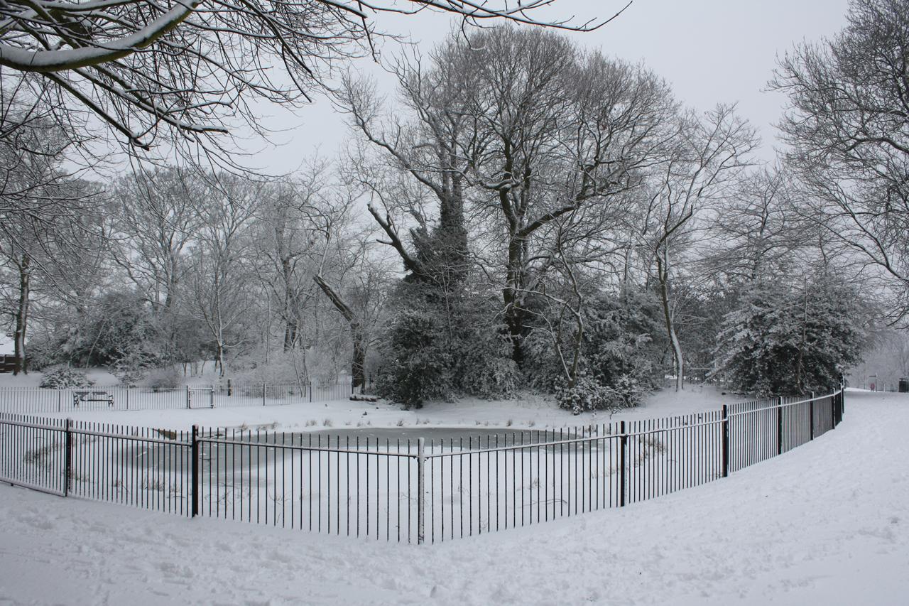 Eaglesfield-Park-Lilly-Pond-February-2012