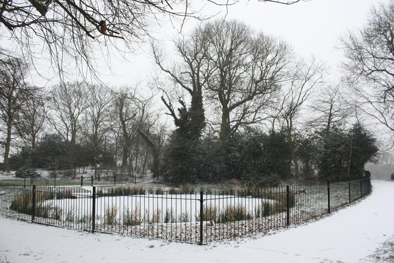 Eaglesfield-Park-Lilly-Pond-February-2013