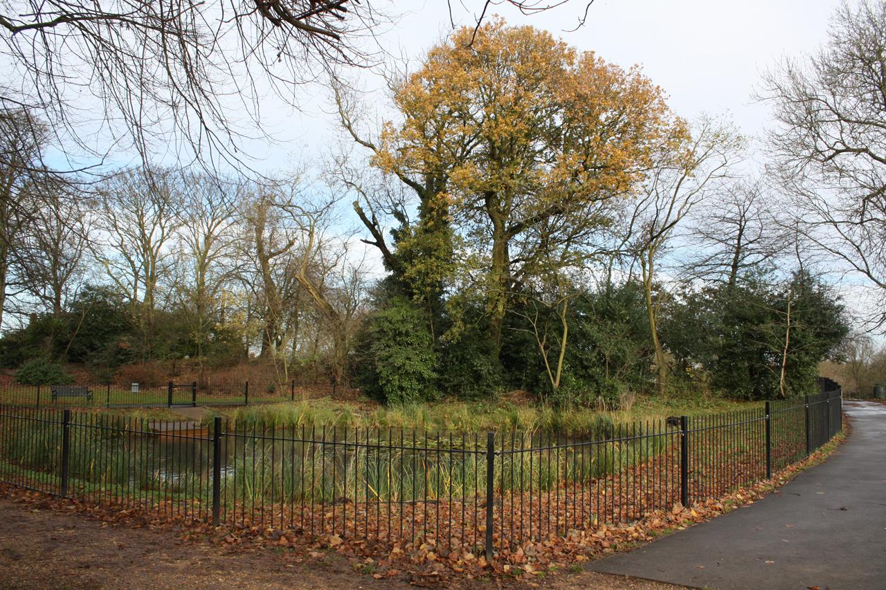 Eaglesfield-Park-Lilly-Pond-November-2012